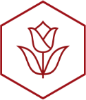 Campus Appearance icon